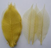 50 pieces RUBBER SKELETON LEAVES